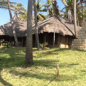 Mozambique thatched hut
