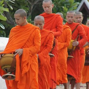 Laos monks in orange robes